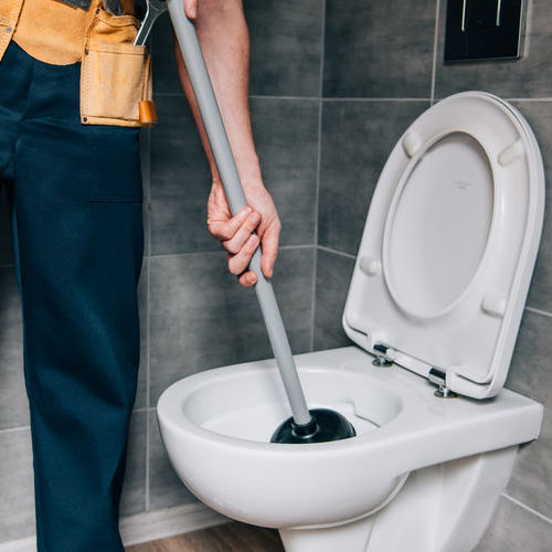 A Plumber Plunges a Toilet.