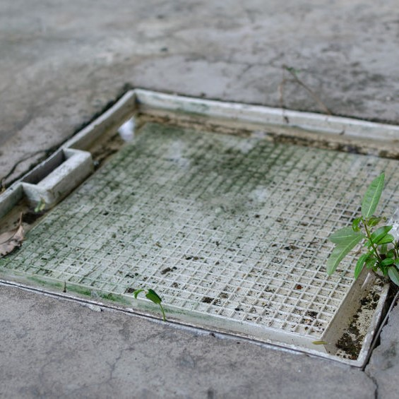 grease trap lid