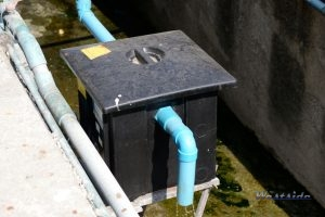Outdoor Grease Trap and Pipe