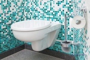 New Toilet Installation With Mosaic Tile Wall